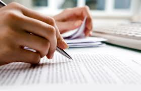 essay writing skills for ielts